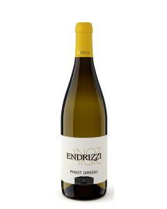 Pinot Grigio Trentino DOC 2018